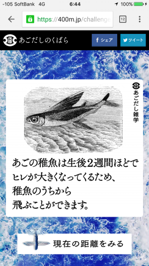 IMG_7062
